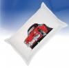 thumb_2891_pillow.jpg